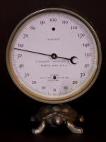 Figural Thermometer With A Turtle Base